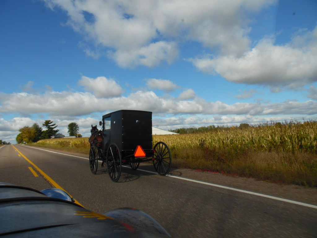 One of many Amish buggy's we came across..