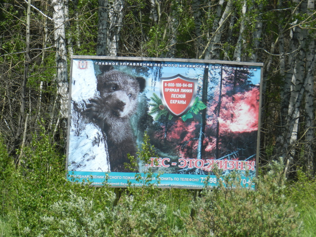 Forest fire prevention sign outside Tyukalisnk during the drive to Ishim