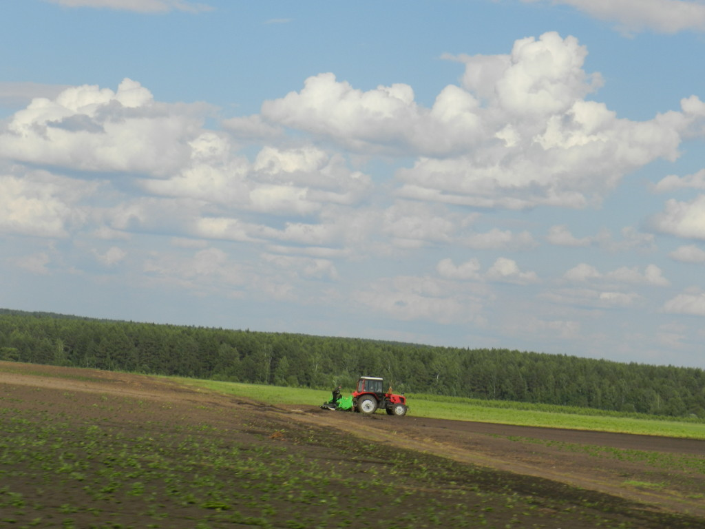 Farm field on the drive from Yekaterinburg to Perm