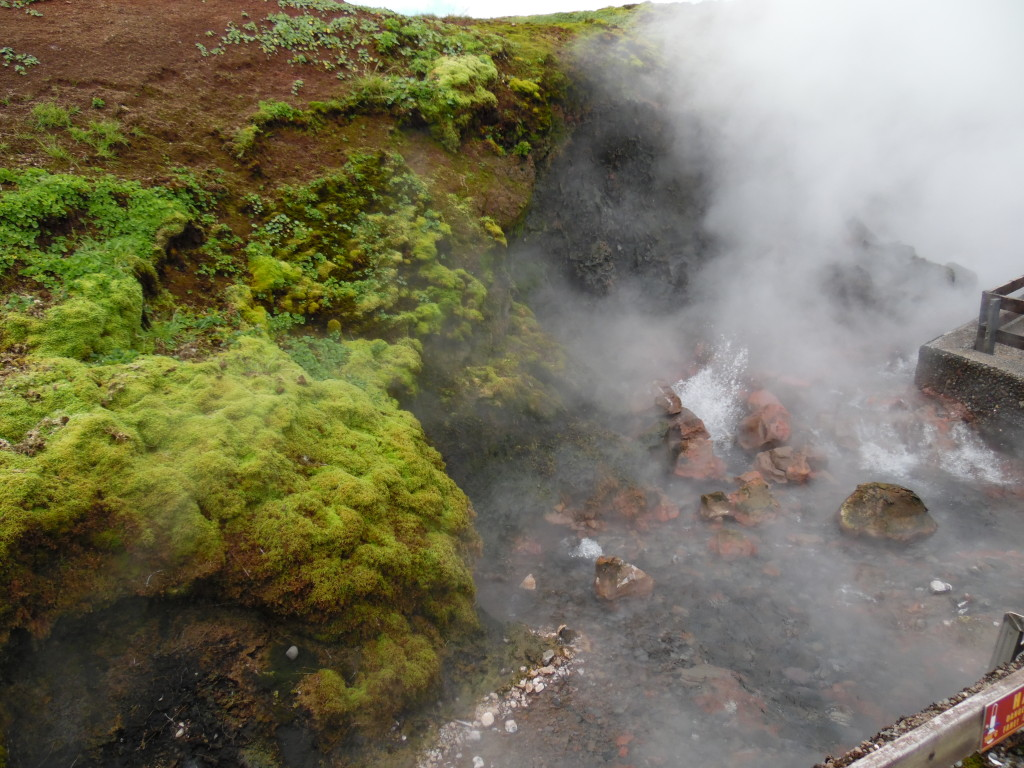 A geothermal spring.....this spring supplies 3 towns with hot water for heating