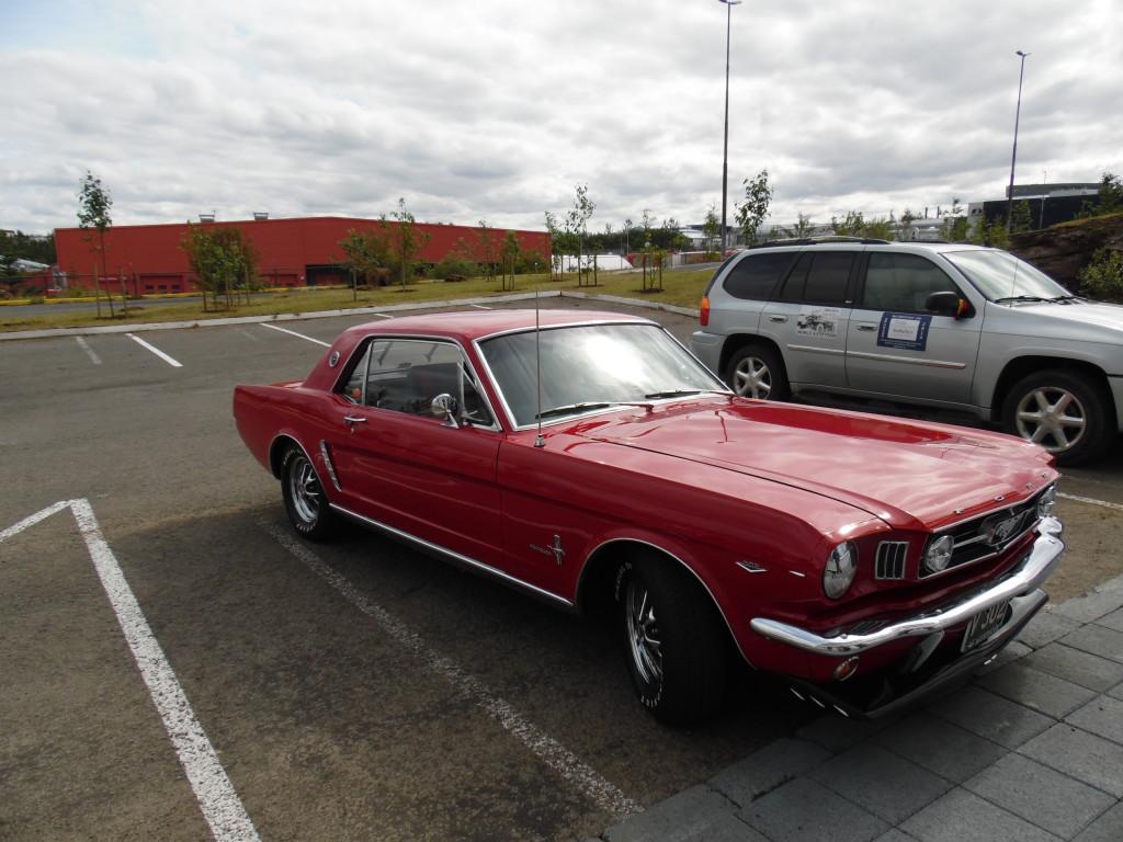 1964 1/2 Mustang ...