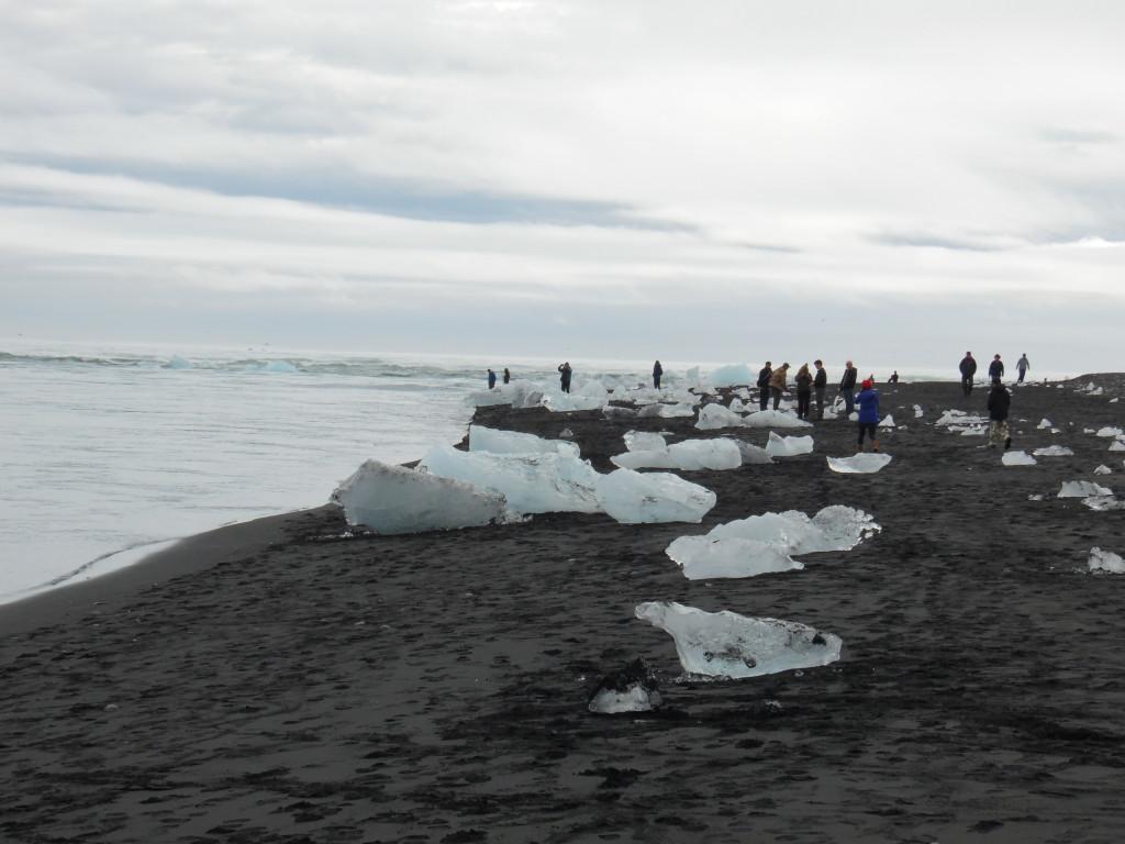 Glacier chunks on a black sand beach....