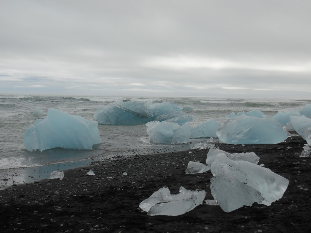 Ice pieces from glacier drifting out to sea